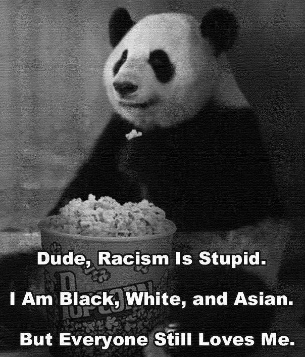 panda knows best